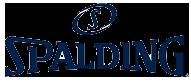Spalding в интернет-магазине ReAktivSport